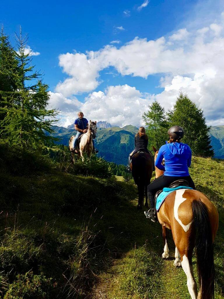 3 Zoncolan_escursioni a cavallo
