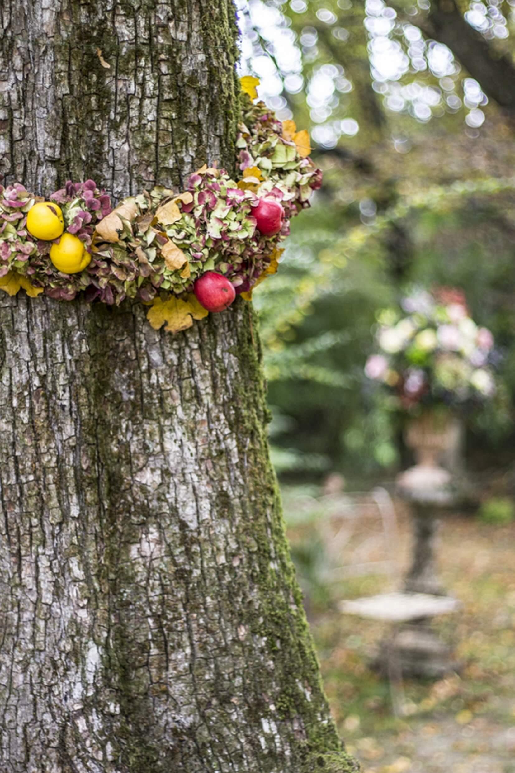 Strassoldo_In Autunno Frutti, Acque e Castelli (4)