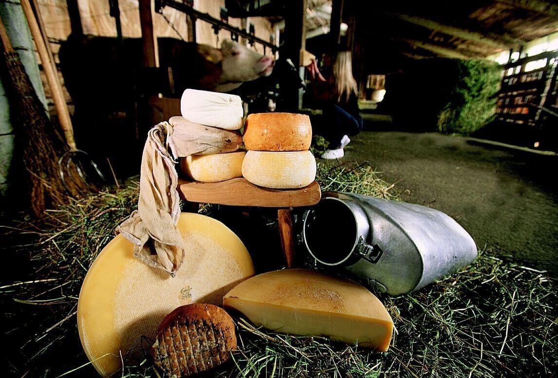 16 e 17 dicembre a Sutrio, in Carnia FORMANDI – Sapori e formaggi di montagna