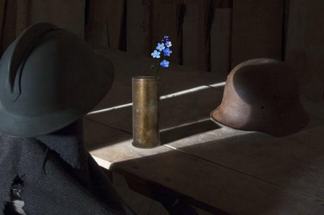 Ad Asiago mette radici il Fiore della Memoria:un simbolo perenne per ricordare la Grande Guerra