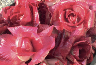 La Rosa dell'Isonzo protagonista alla Tavernetta al Castello di Capriva del Friuli – 12 febbraio Cena a quattro mani con lo chef Roberto Franzin