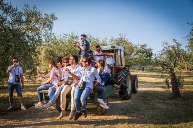 Cantine Aperte 2019 torna in oltre 800 cantine d'Italia l'ultimo weekend di Maggio