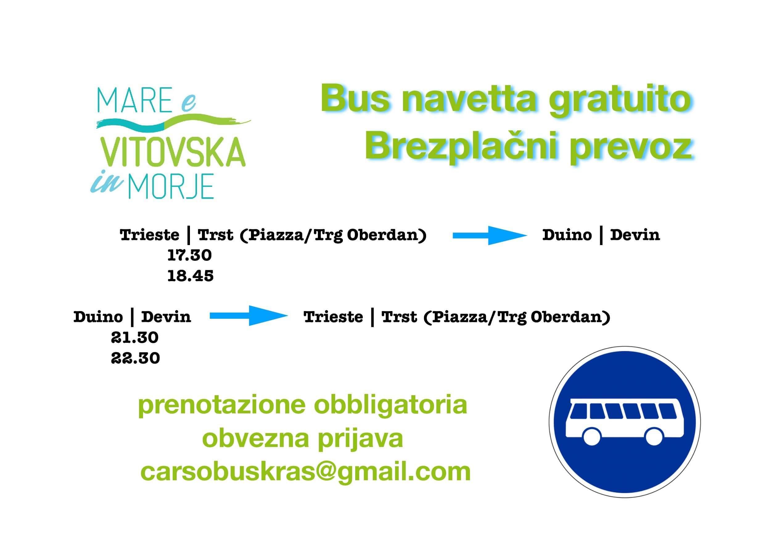 bus19