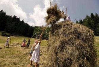 """Domenica 4 agosto 2019   Appuntamento sui prati dello Zoncolan  con """"Fasjn la mede"""""""