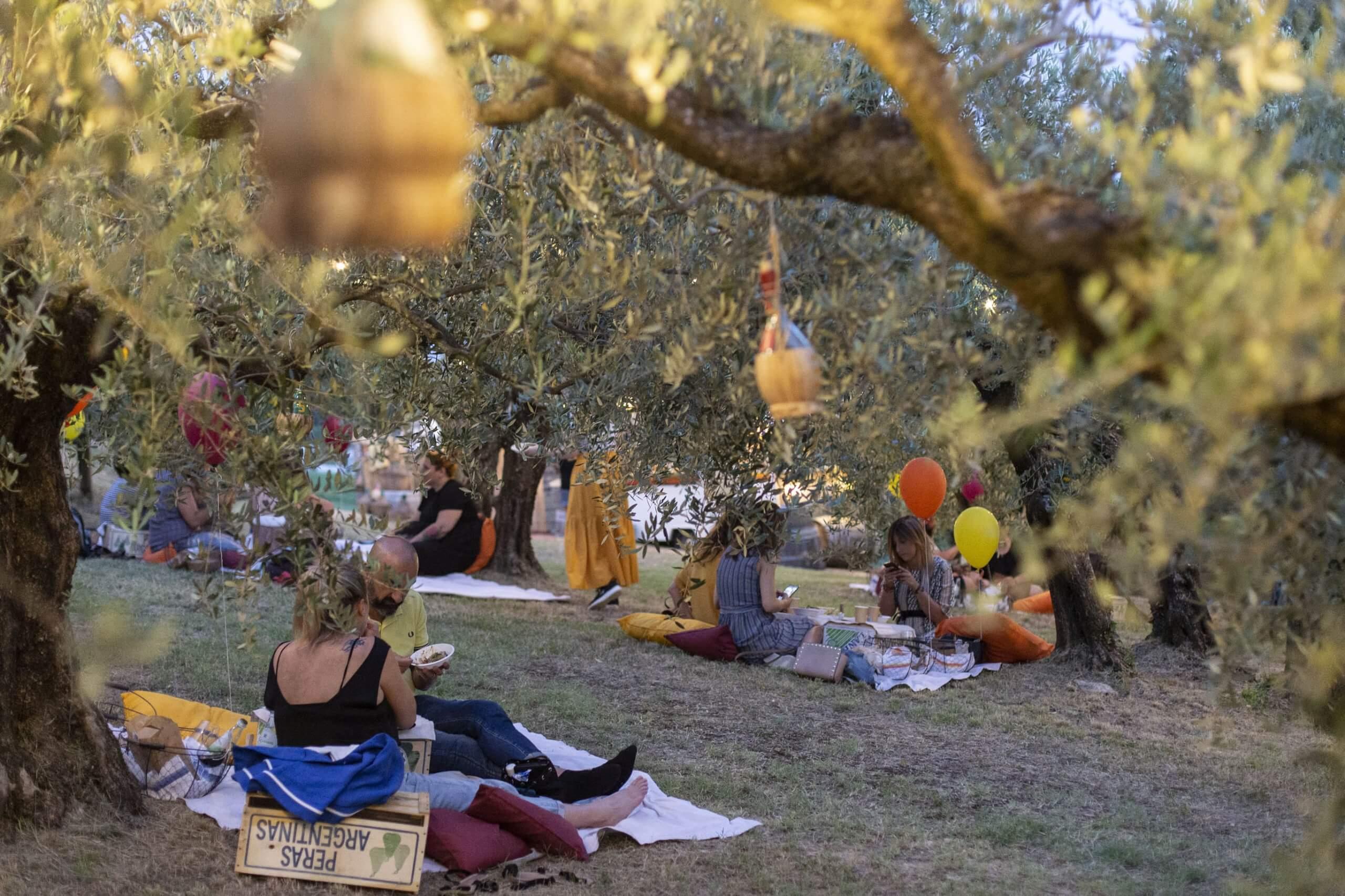 """""""Chilometro casa"""": i mercoledì del picnic Imbrunire. L'Azienda Agricola Terre Giunchi lancia, a Cesena, il progetto filiera cortissima"""