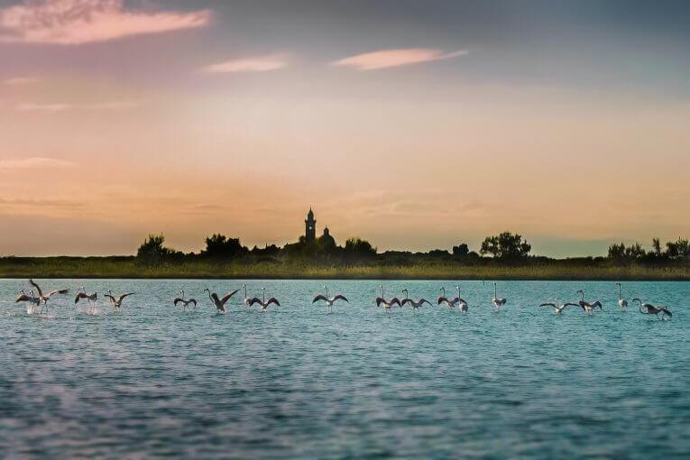 La cultura del mare a Grado.